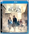 6009707515378 - Fantastic Beasts And Where To Find Them - Dan Fogler