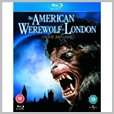 10003 BDU - An American werewolf in London - David Naughton
