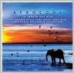 sspcd 102 - Afrocool - SA Smooth Jazz Hits