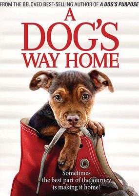 5035822912588 - A Dog's Way Home - Ashley Judd