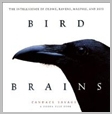 PEGDVD 1019 - Bird Brains (Dvd) - Bird Brains