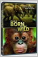 Y31832 DVDW - IMAX - Born to be wild